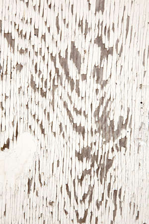 closeup of old weathered board with white paint Stock Photo - 16808098