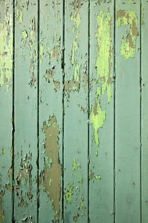 part of green weathered wooden fencing or boarding Stock Photo - 19023082