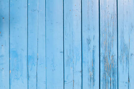 light blue painted planks of old shed with peeling paint photo