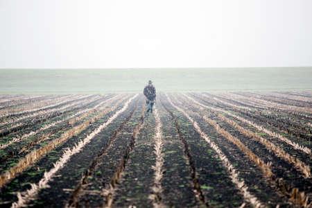 霧深い条件の下でオランダのトウモロコシ畑にライフルを持つハンター 写真素材