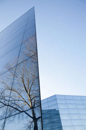 blue facades sky: part of facades of geometrically shaped modern glass building with reflections of blue sky and tree Stock Photo