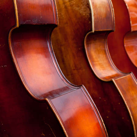 upright row: closeup of three double basses in a row