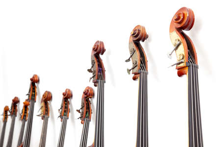 upright row: row of double basses details leaning against a wall