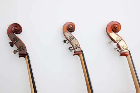 upright row: heads of three double basses leaning against a wall