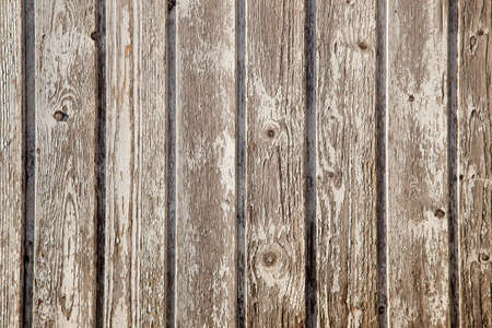 old planks of garden shed with peeling white paint
