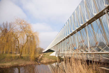 glass sound barrier and weeping willow in the dutch town of Amersfoort near motorway photo