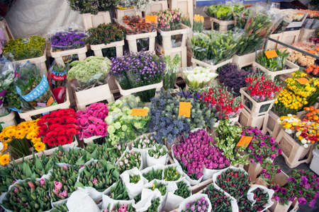 breda: tulips and other flowers on marketplace in the dutch city of breda