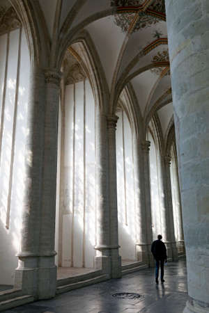 breda: man in interior of breda cathedral in the netherlands Editorial