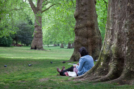 picknick: London, United Kingdom, 6 may 2017: woman sits and reads on the grass near old tree in london st jamess park