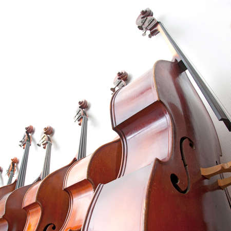 row of double basses leaning against a wall on square picture