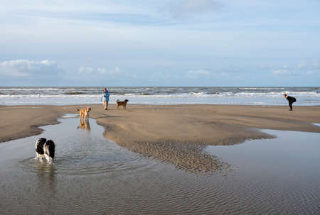 camperduin, Netherlands, 17 december 2017: people and dogs on north sea beach in the netherlands Editorial