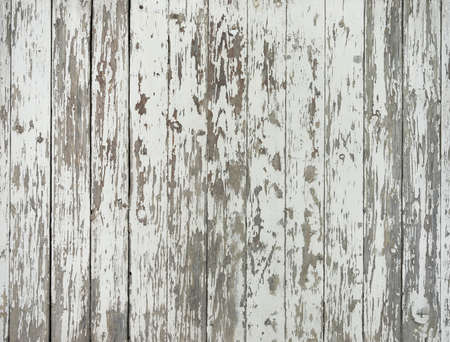 background consisting of old and grungy vertical wooden planks with peeling white paint 版權商用圖片
