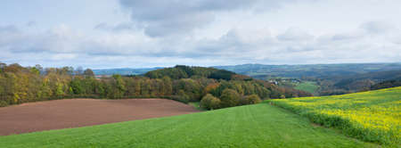 field with mustard seed and colorfull rural autumnal landscape in german eifel under cloudy sky
