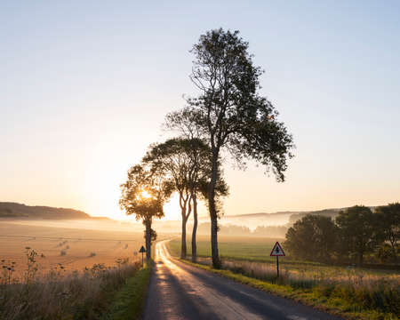 early morning country road in french picardie near boulogne and calais Reklamní fotografie