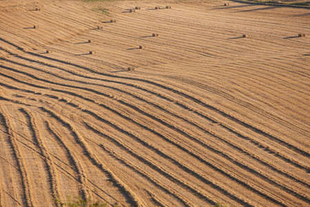 abstract pttern of corn field with straw bales with long shadows of setting sun Reklamní fotografie