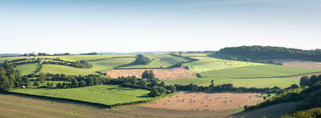 landscape with cornfields and meadows in regional parc de caps et marais dopale in the north of france