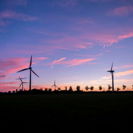 wind turbines and trees form silhouettes against colorful sunset Reklamní fotografie