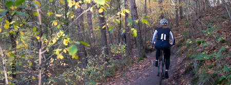 woman on mountainbike on trail in autumn forest near zeist in the netherlands