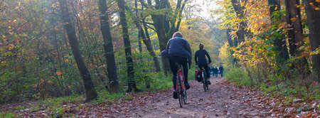 couple on bicycle in autumn forest near Zeist in holland Reklamní fotografie