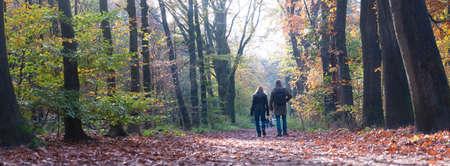 couple walks in autumn forest near Zeist in holland