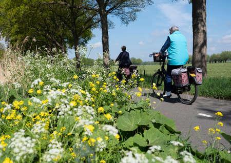 people ride bicycle on track near wild flowers in dutch spring near utrecht Reklamní fotografie