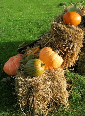 feast of the pumpkin in a village Breton France