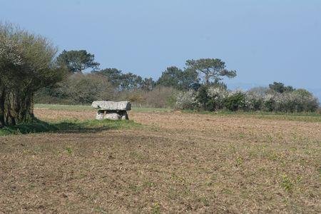 Dolmen in the fields, France,