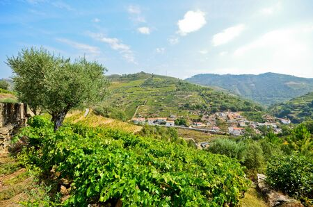 peso: Douro Valley: Vineyards and small village near Peso da Regua Portugal Stock Photo