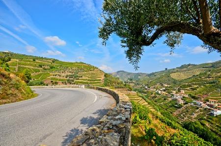Douro Valley: Vineyards and small village near Peso da Regua, Portugal