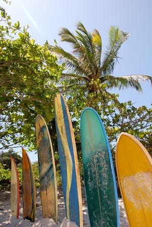 Ilha Grande: surfboards at beach Praia Lopes Mendes Rio de Janeiro State Brazil