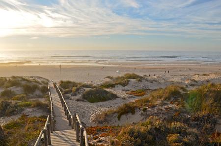 escalera: Algarve: Escaleras a la playa de Praia de Monte Clérigo cerca de Aljezur, Costa Vicentina, Portugal Europa Foto de archivo