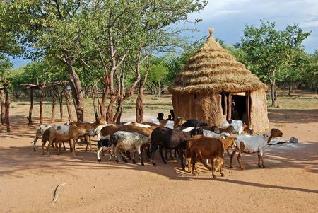 Pueblo Himba con cabañas tradicionales cerca de Parque Nacional de Etosha en Namibia, África