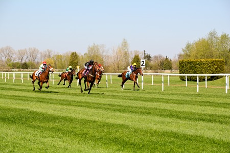 Horse racing at the racecourse in Munich-Riem, Germany Редакционное