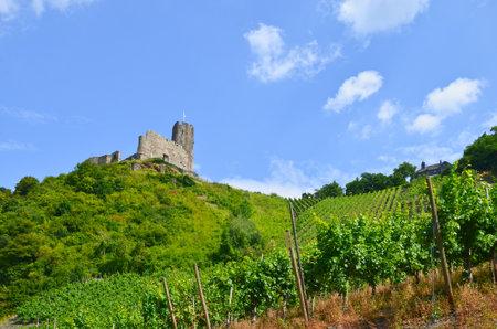 landshut: Moselle Valley Germany: View to vineyards and ruins of Landshut castle near Bernkastel-Kues, Europe