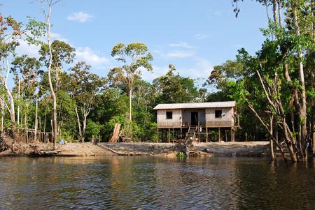 rio amazonas: La selva amazónica: Paisaje a lo largo de la orilla del río Amazonas cerca de Manaus, Brasil América del Sur Foto de archivo