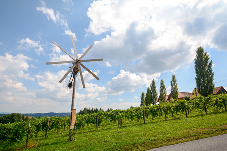 A road with a pinwheel Klapotetz through the vineyard, Southern Styria Austria Banque d'images