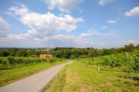 A road with a pinwheel Klapotetz through the vineyard, Southern Styria Austria Stock Photo