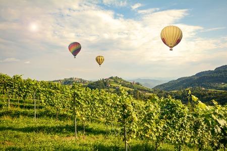 bodegas: globos de aire caliente volando sobre los viñedos a lo largo del sur de Estiria Road, Austria Europa