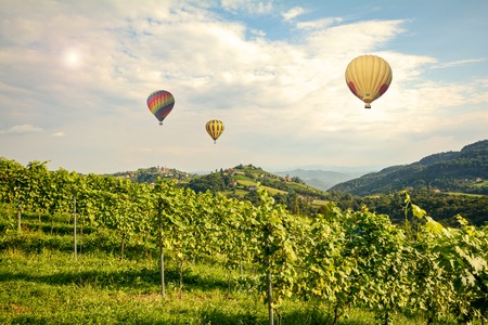 wine road: Hot air balloons flying over the vineyards along South Styrian Wine Road, Austria Europe