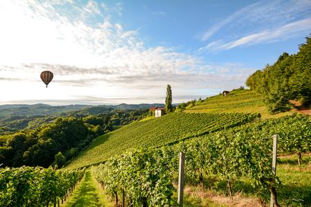Viñedos con globo de aire caliente cerca de una bodega antes de la cosecha en la zona vitivinícola de toscana, Italia Europa Foto de archivo - 83168976