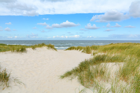 View on the beautiful landscape with sand and dunes at the North Sea, Jutland Denmark