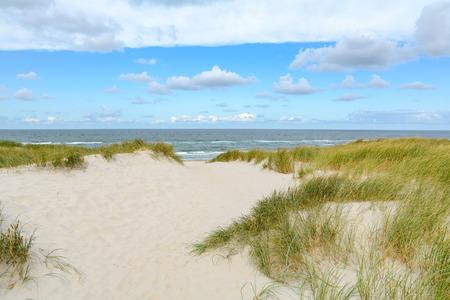 Widok na piękny krajobraz z piaskiem i wydmami na Morzu Północnym, Jutlandia Dania
