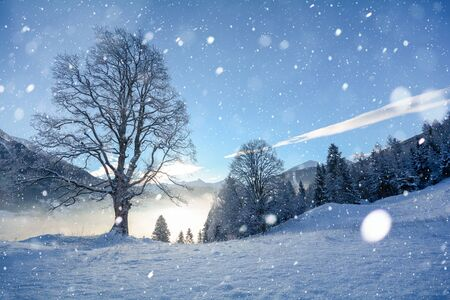 Snowy winter landscape in the Tyrolean Alps during snowfall, Austria Europe