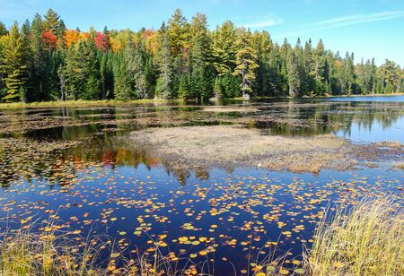 Indian summer at a lake in Algonquin Provincial Park near Toronto in autumn, Canada Stok Fotoğraf - 129320748