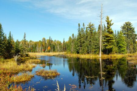 Indian summer at a lake in Algonquin Provincial Park near Toronto in autumn, Canada Stok Fotoğraf - 129320743