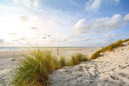 View to beautiful landscape with beach and sand dunes near Henne Strand, North sea coast landscape Jutland Denmark