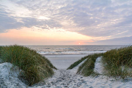 View to beautiful landscape with beach and sand dunes near Henne Strand, North sea coast landscape Jutland Denmark