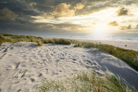 Celebrating Christmas and New years eve at North sea coast, view to beautiful landscape with deserted and calm beach and sand dunes near Henne Strand, Jutland Denmark