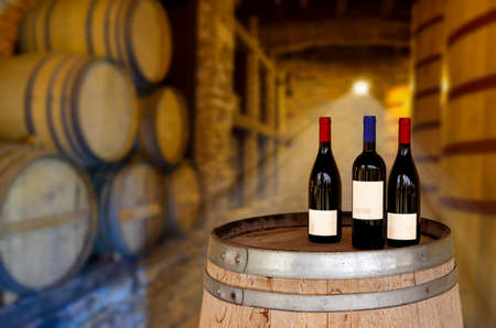Red wine tasting in an old wine cellar with wooden wine barrels in a winery