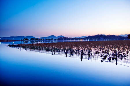 lake sunset: Hangzhou West Lake sunset